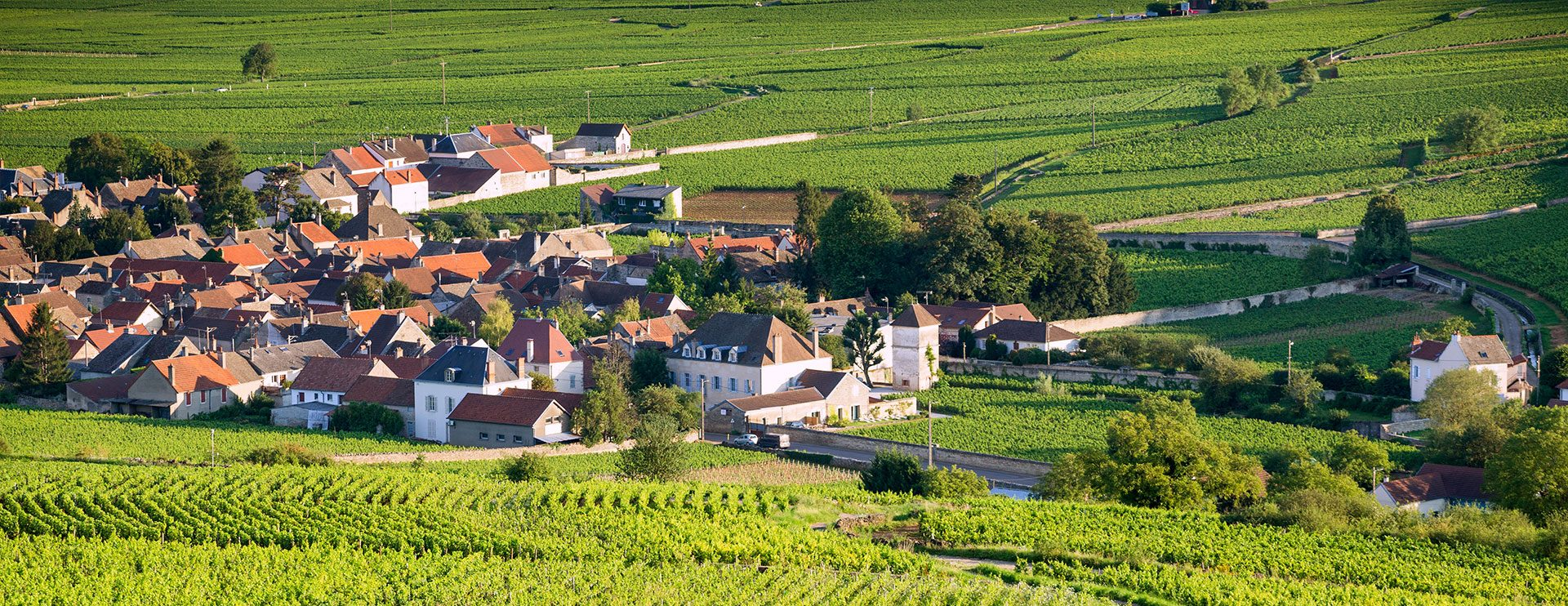 Le village de Pommard
